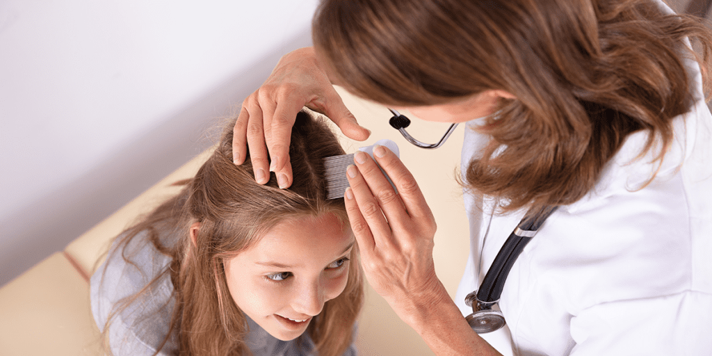 Your Child Brought Home Head Lice: Don't Worry, You Can Beat It! 2020